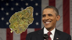 Obama-Administration-Clears-The-Way-For-Marijuana-Research-copy