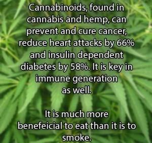 cannabinoids1-300x282